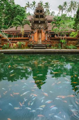 Pools at Tirta Empul temple.jpg