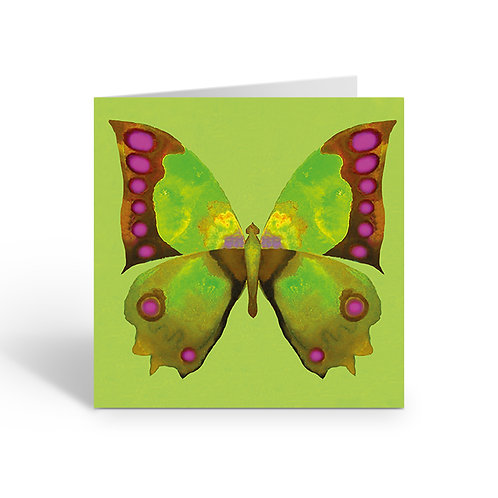 Green Butterfly - card