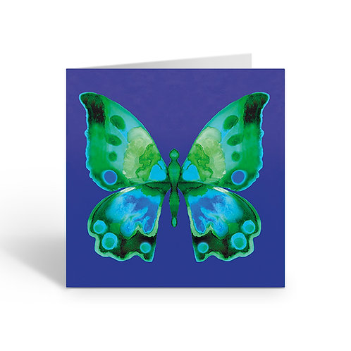WHOLESALE PACK OF 6 Green/blue Butterfly - J009