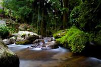 Gardens at Gunung Kawi.jpg