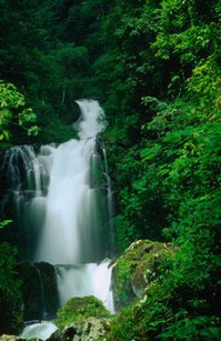 Waterfall at Gitgit.jpg