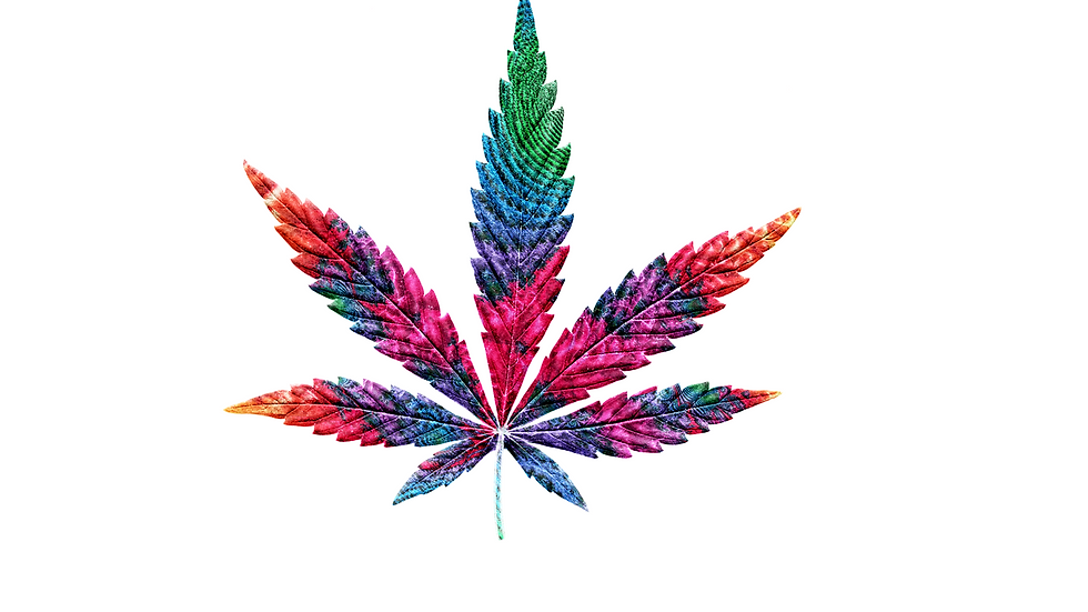 Weed trippy fractal rainbow: T-shirt