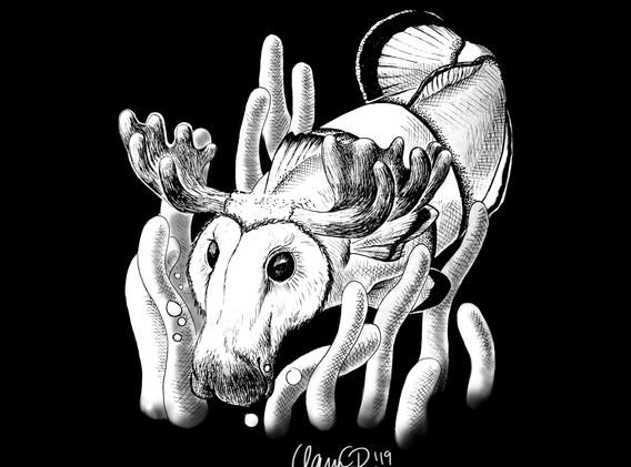 Day16_clownfish_moose_barnowlBLACK.jpg