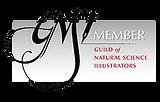GNSI member.png
