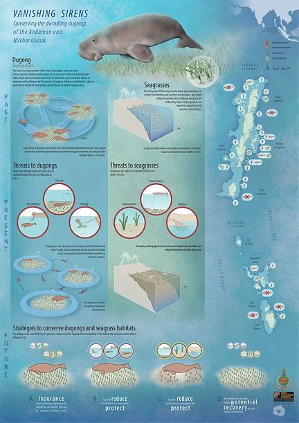 poster dugong-01.jpg