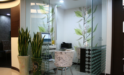 Previous Clinic in Seoul 4