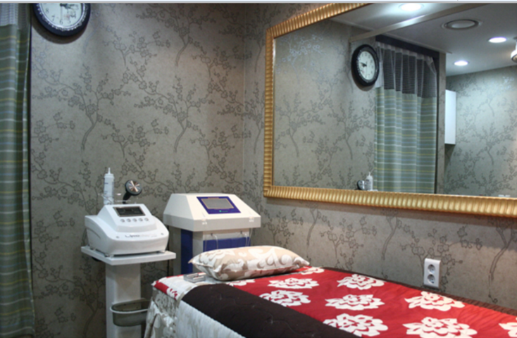 Previous Clinic in Seoul 7