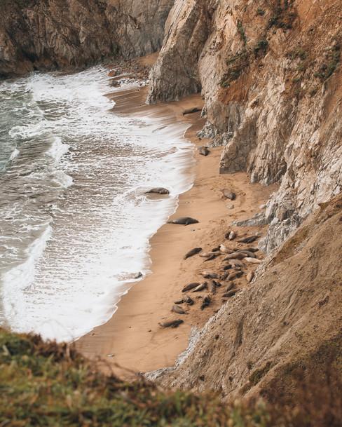 California-19.jpg