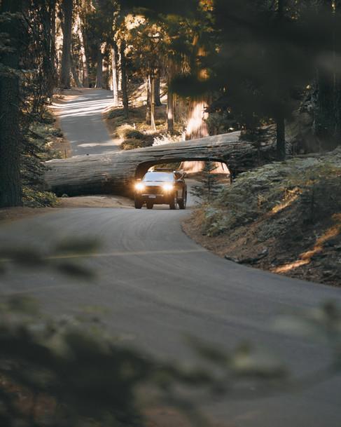 California-9.jpg
