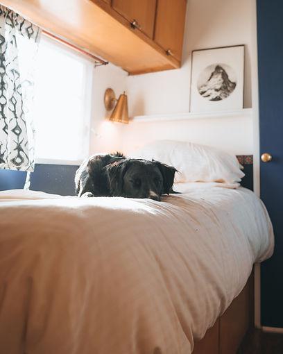 Hotel Luna Mystica-13.jpg