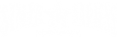 Logo STP white.png