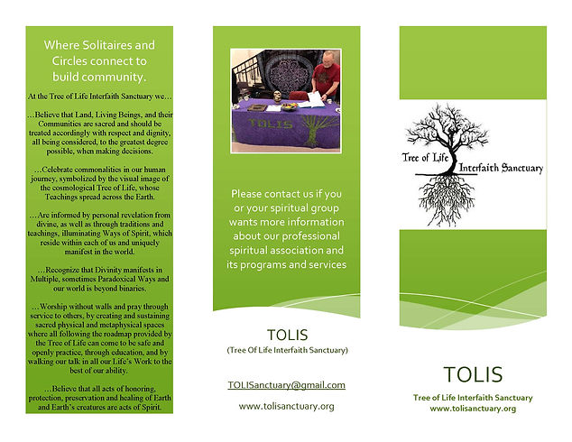 TOLIS brochure 1_Page_1.jpg