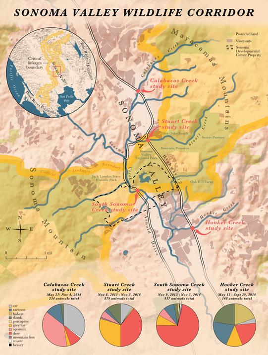 Sonoma Valley Wildlife Corridor