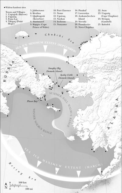 Walrus Ranges of the Bering Strait