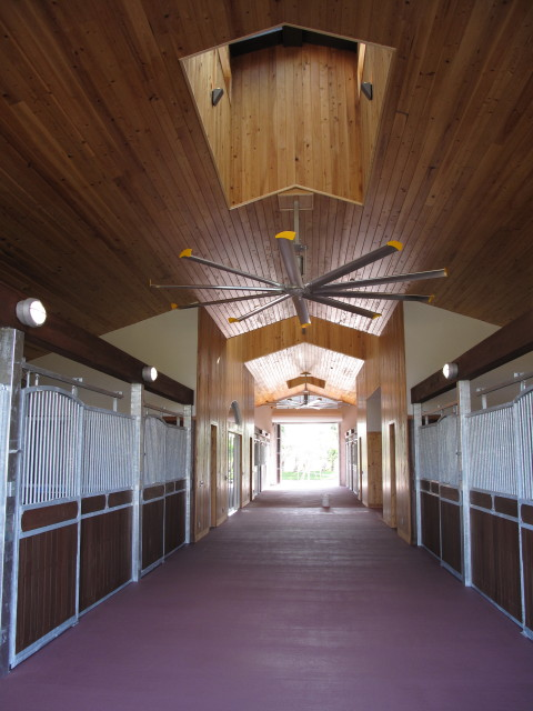 Equestrian Stable T&G Ceilings and Colored Concrete Floors