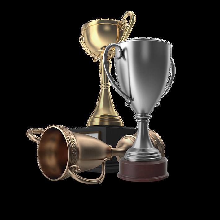 trophy 1 - brad.png