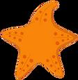 starfish new.png
