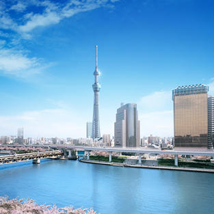 東京スカイツリー 約40分電車 TOKYO SKYTREE 40min by train.