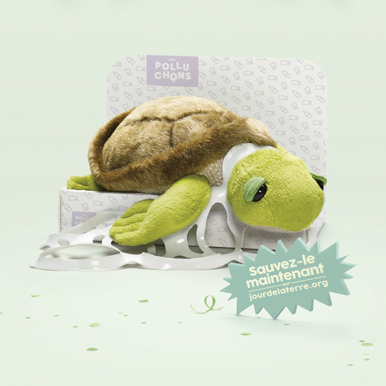363_Tortue_1