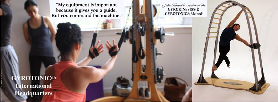 gyrotonic you command the machine.jpg