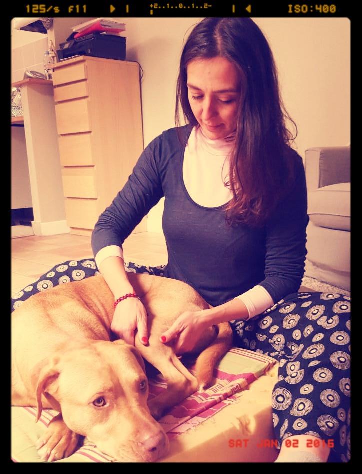 Método Feldenkrais para perros Feldenkrais pour chiens - Aimará Moreno Osío