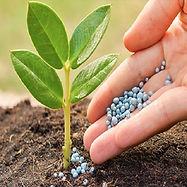 biosol-p-fertilizers-500x500.jpg