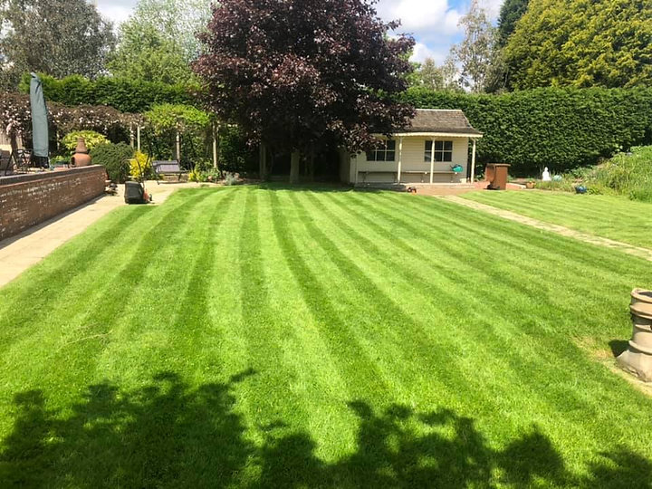 lawn lines