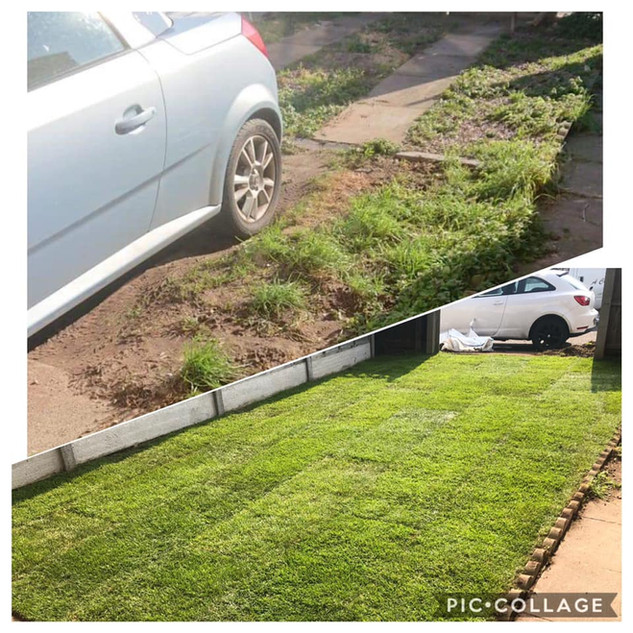 before and after picture lawn
