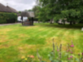 lawn turf4.jpg