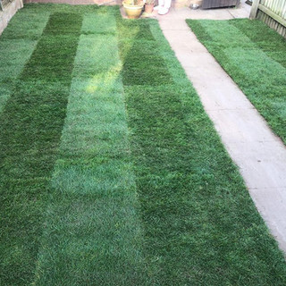 Turf fitting by lord of the lawns