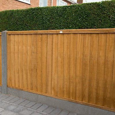 fencing 3.jpeg