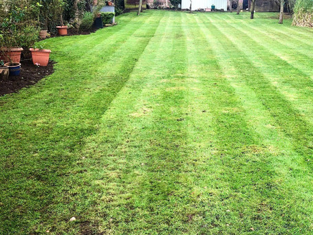 b lawn mowing.jpg