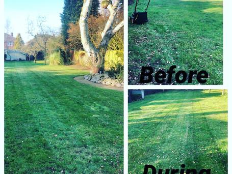 Lawn mowing lichfield