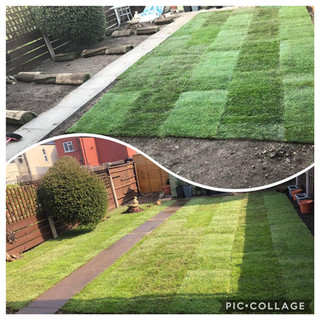 turf during and after turfing