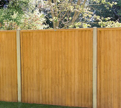 Fencing All Year Round!