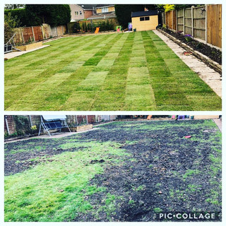 Turf and soil supply
