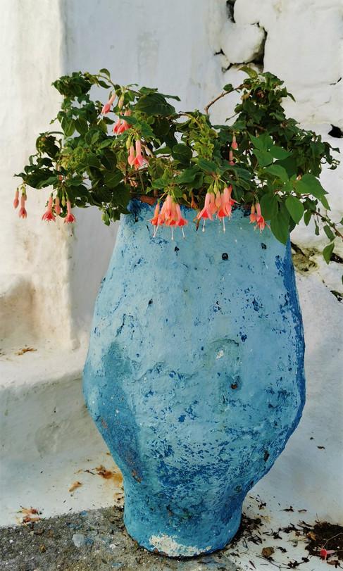 Kreta Blumen