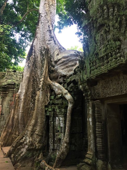 Angkor Wat Cabodia