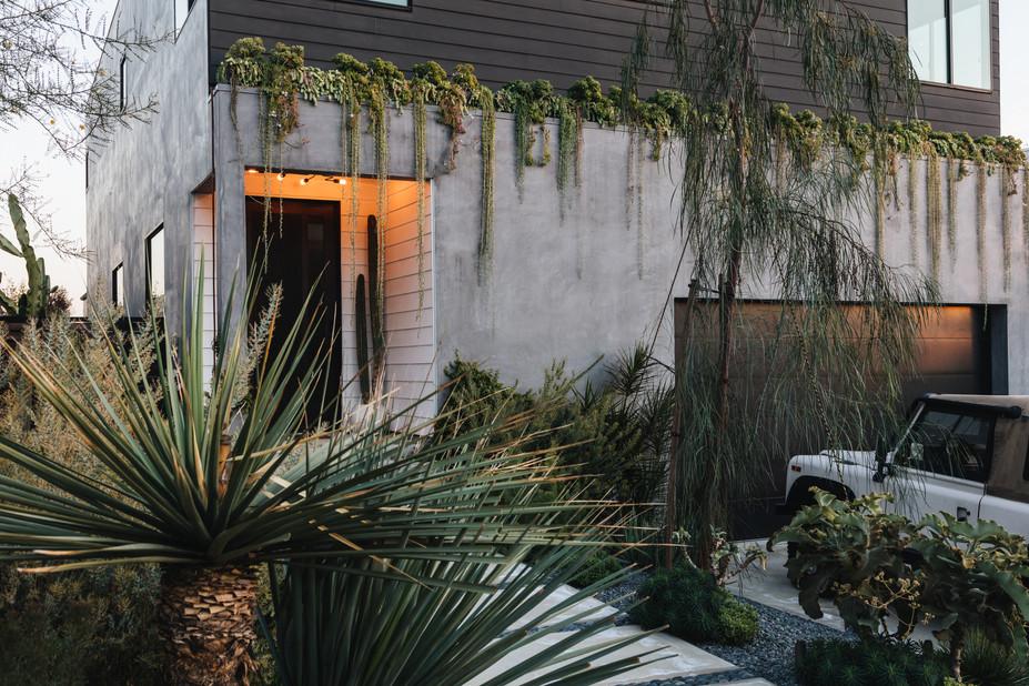 Night Palm Silver Lake Modern Residence Exterior