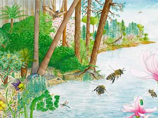 Les débuts de la pollinisation
