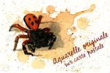 Erèse Coccinelle - Original vendu