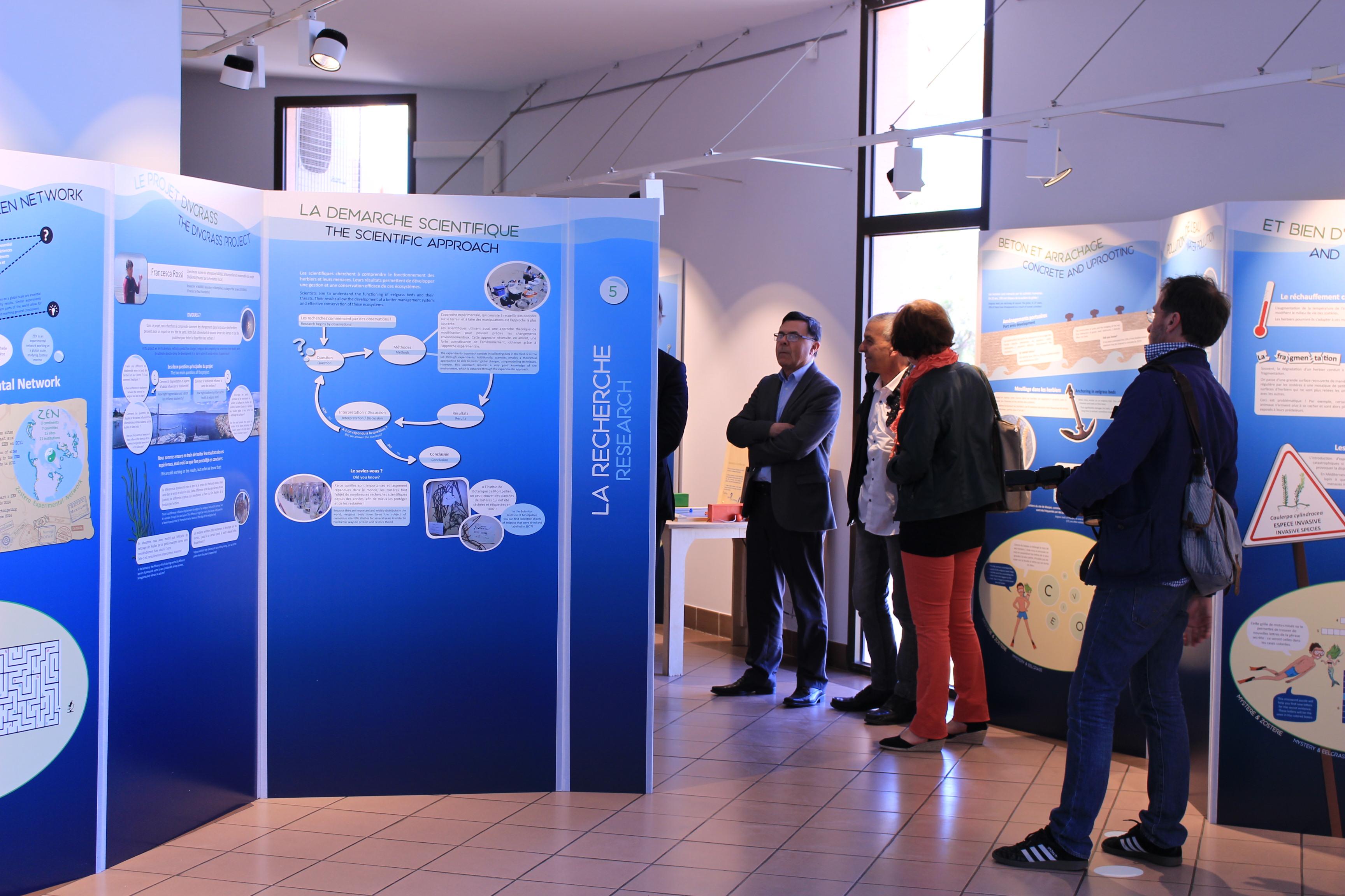 Exposition Zostère - Musée de Thau