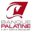 palatine-logo-share.jpg