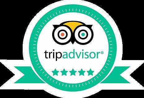 Trip advisor street tours India.png