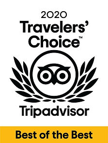 2020-travelers-choice.jpg