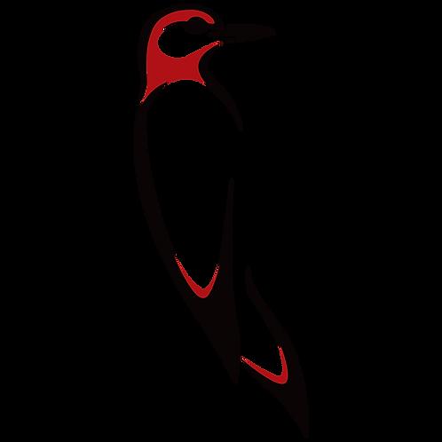 Digital Bird Series – Redhead Woodpecker