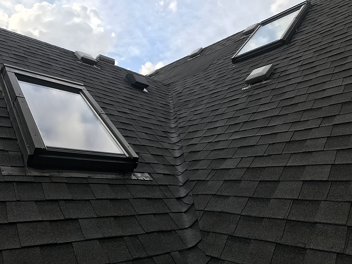 Sunlight black shingles