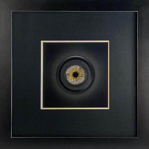 Photographers Eye Series – Hazel Eye