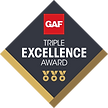 Triple Excellence Award.png