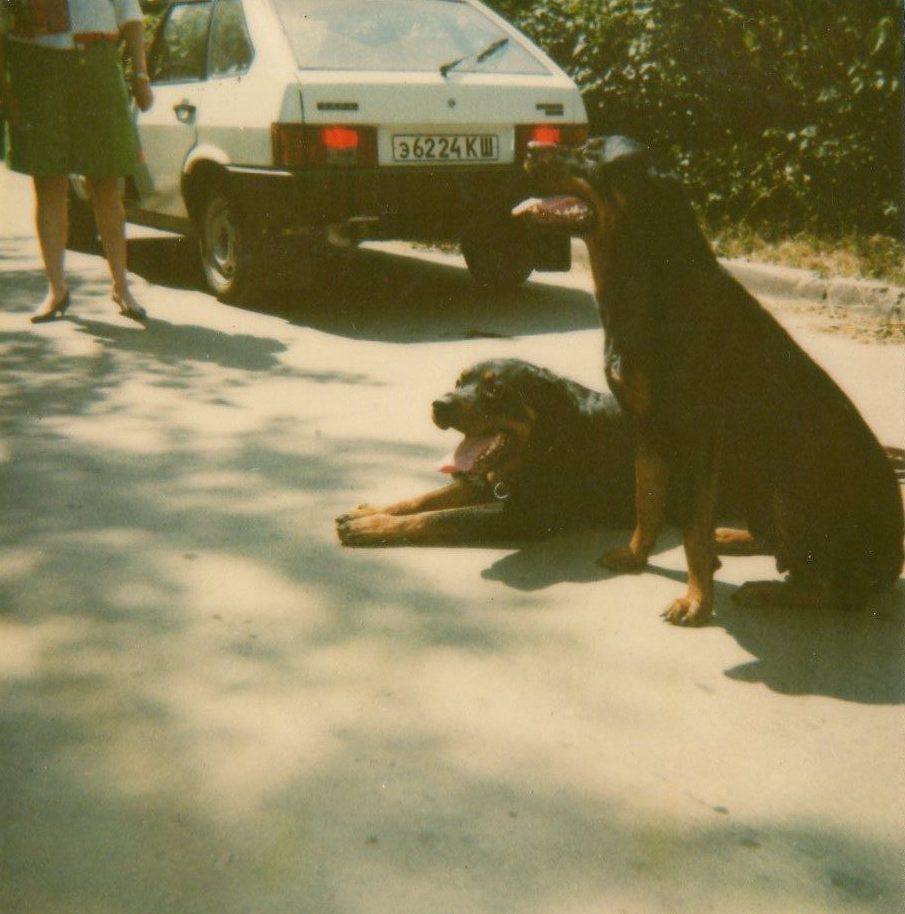 Икарос Ортлес с Алина Анхара /1992/